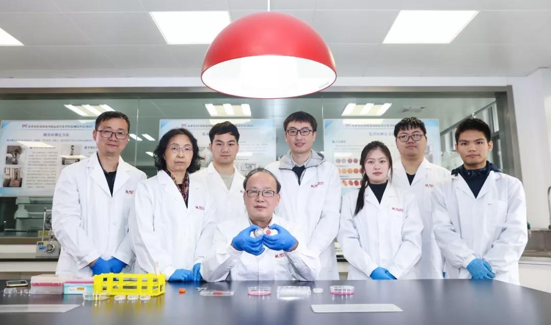 我国首块人造培养肉在南京农业大学国家肉品中心诞生