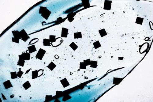 微塑料已影响人类呼吸?日本研究人员在空气中发现的微塑料