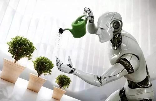 国内首款万平米级AI机器人亮相巴山大峡谷
