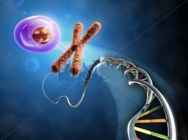 世和基因獲8億元D輪融資 助力腫瘤基因檢測