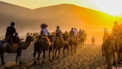 澳杀5000头骆驼怎么回事?因与澳洲居民争抢水资源