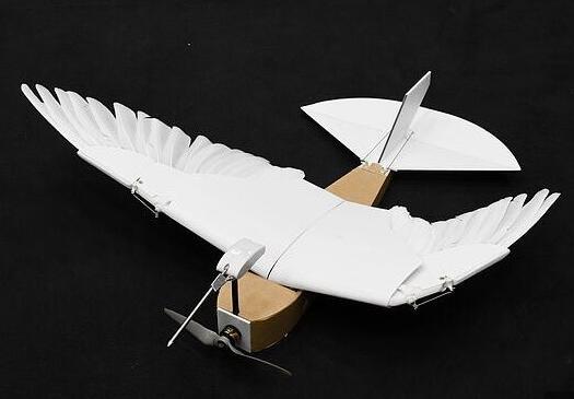 """""""鸽子机器人""""问世即登上Science  插满40根羽毛俯冲急转毫不费力"""