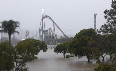 澳大利亚百年大暴雨引发新灾害 或危及整个生态系统