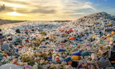 我国全面禁止废塑料进口 世界塑料垃圾何去何从?