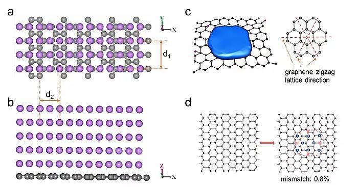 金属锂的电结晶特性在还原氧化石墨烯(rGO)上实现平面锂层定向生长