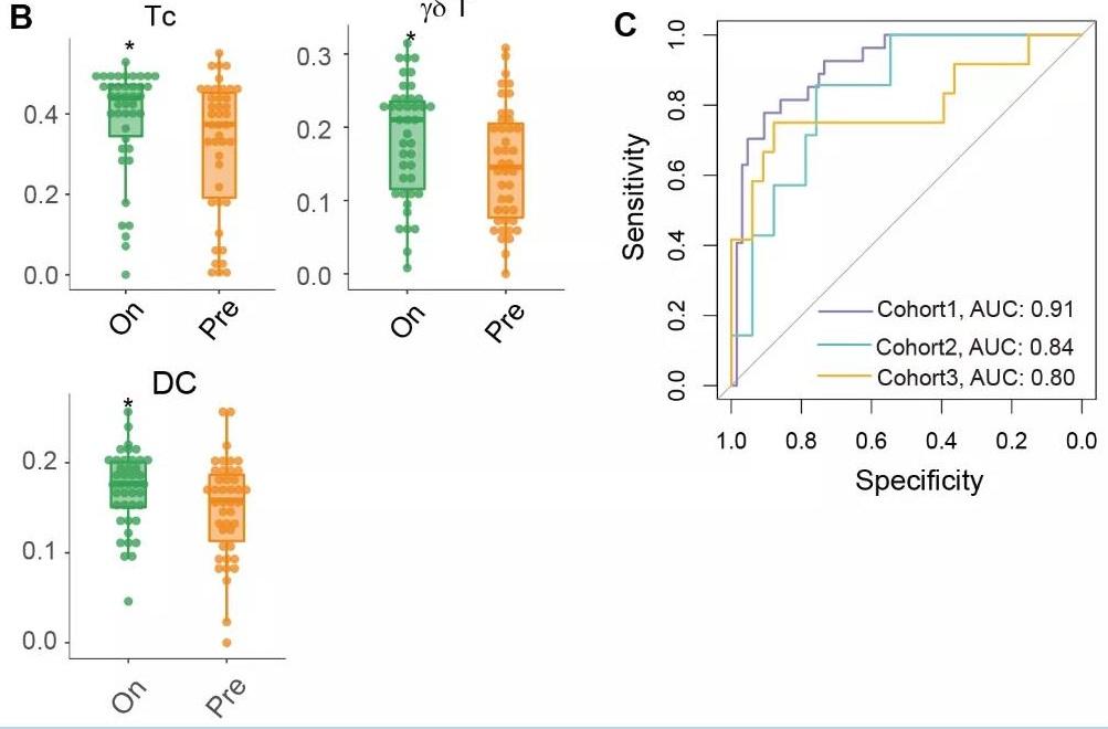 华科大开发首个T细胞亚型丰度预测工具,促进肿瘤免疫治疗