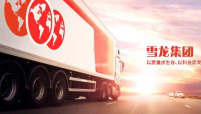 雪龍集團今日上市 業績逆勢增長商用車細分領域單項冠軍