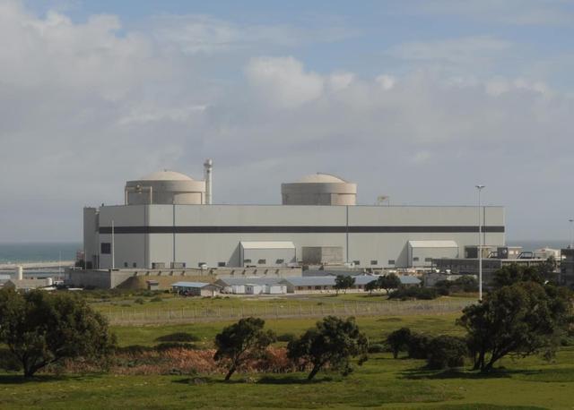 南非核电站故障:导致部分地区断电 具体原因仍在调查