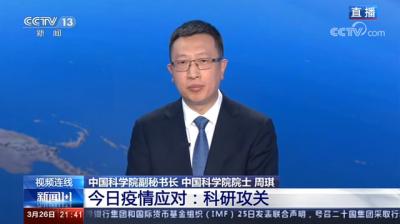 专家回应病毒在中国无重大突变,白岩松连线还说了什么?