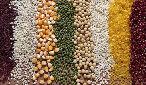 全球多国禁止粮食出口: 粮食危机一触即发, 粮油股狂奔怎么办?