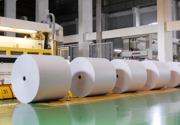 两大纸业巨头抢建千亩造纸基地 提前破局原料危机