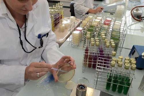 德国研究所发现病毒检测新方法,日均检测达20万至40万人次