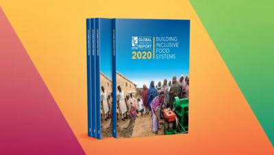 《2020全球粮食政策报告》发布,IFPRI呼吁建立包容性食物系统