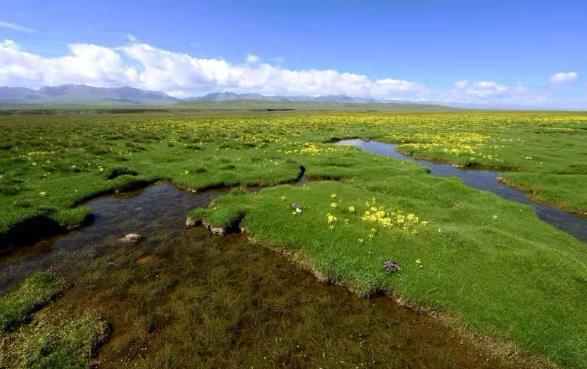 三江源国家公园年底前将正式设立 已建成487个地面监测站