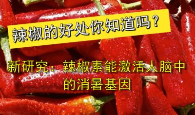 辣椒的好处你知道吗?新研究:辣椒素能激活人脑中的消暑基因