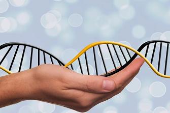 ?基因突变是什么?有哪些类型?与癌症有什么关系?