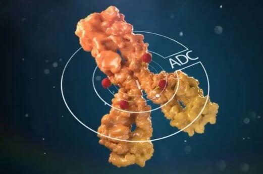 中国首个抗体-药物偶联物上市申请被正式受理,用于治疗胃癌