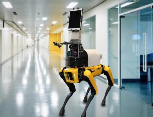 "SPOT机器狗变身""狗护士"" 可远程测量患者生命体征"