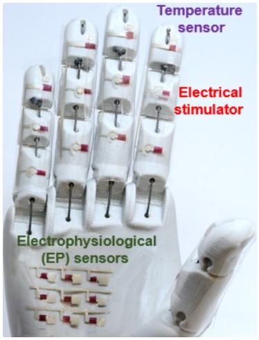 医用机械手可以帮助评估重要的诊断数据