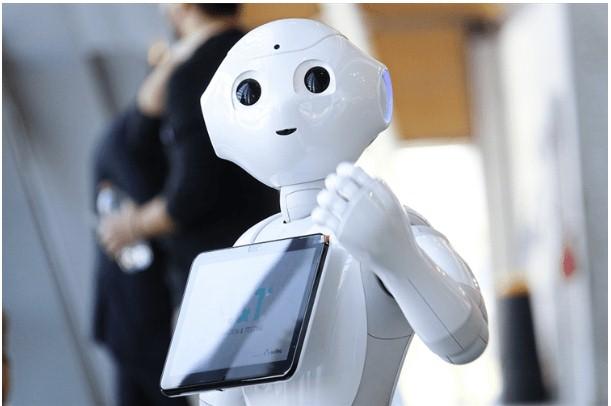 用于为人形机器人提供动力的燃料电池