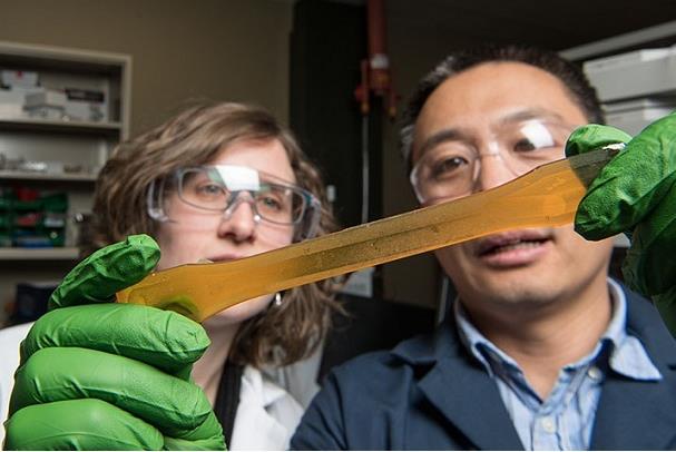 研究人员开发可再生聚氨酯的新方法 满足市场需求