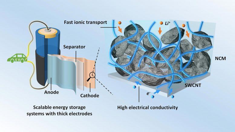 科学家发现,使用碳填充剂可以改善高能锂离子电池