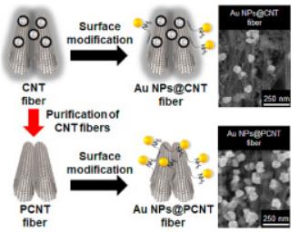 科学家通过碳纳米管表面改性,制作出高性能多功能纳米复合纤维