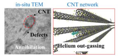 碳纳米管(CNT)金属复合材料:我有更好的辐射抗性