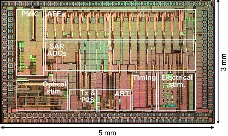 新研发的无线多模态芯片帮助科学家深入了解大脑