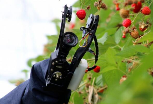 农业机器人的技术前景以及引起的道德问题