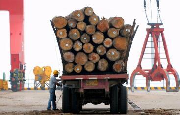 2021年1月1日起,降低木材和紙制品等商品的進口暫定稅率