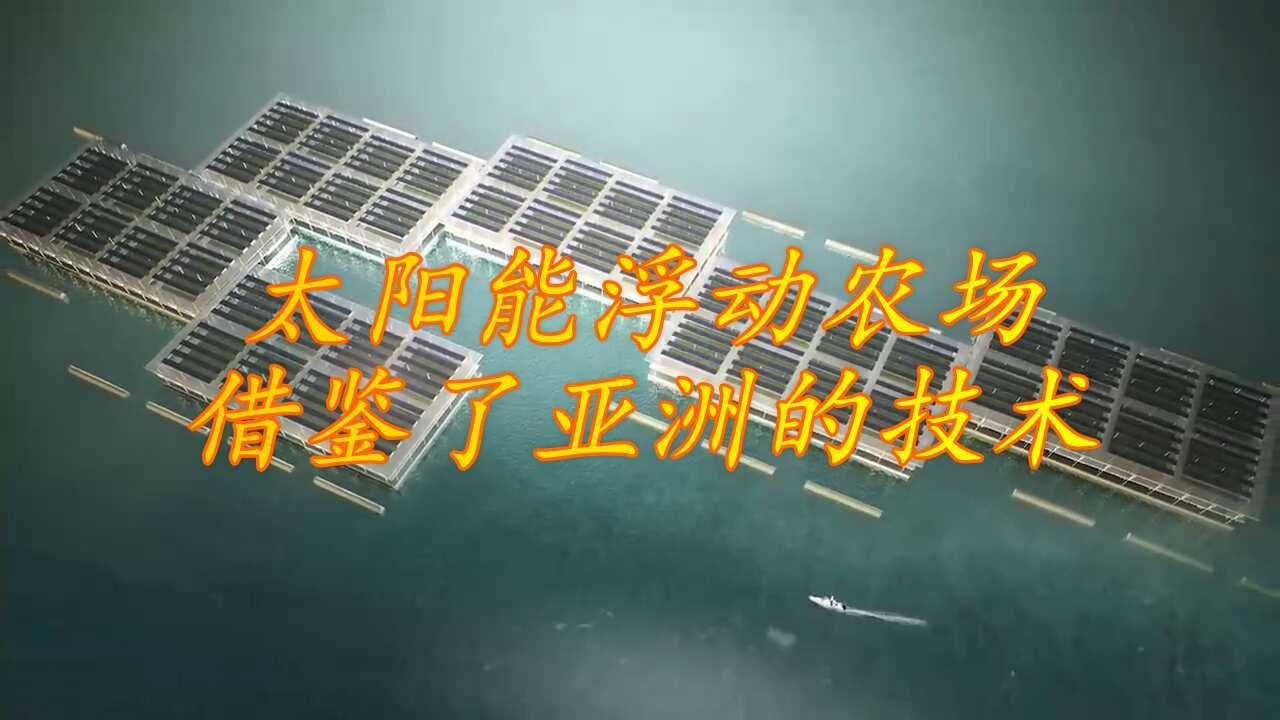 """太陽能不止能發電,還能在海上搞""""生物科技""""呢"""
