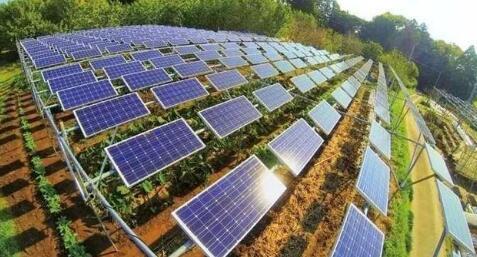 研究发现农用光伏系统可提供美国总发电量的20%,还可提高粮食产量