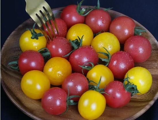 AI种番茄技术走出实验室:亩产30000斤 还有小时候的味道