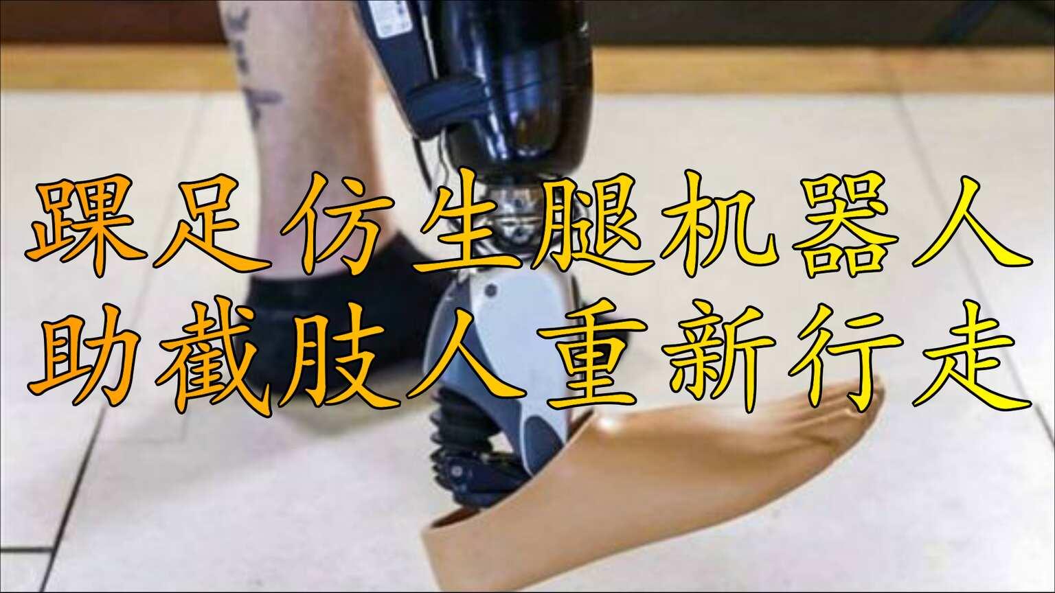 踝足仿生腿机器人系统,助截肢人重新行走
