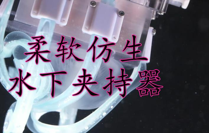 可怕的柔性!这个机器人抓手竟然可以在水下抓水母?