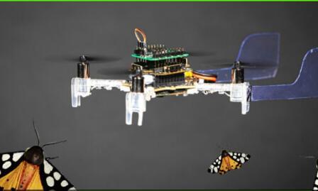 """创新型""""嗅觉""""无人机 将被用于火星探索"""