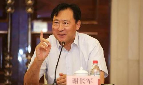 原國電集團副總經理謝長軍被查 曾掌舵全球最大風電公司