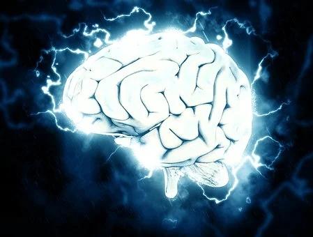 科学家破解人脑8大谜题:人类大脑缘何如此特殊?