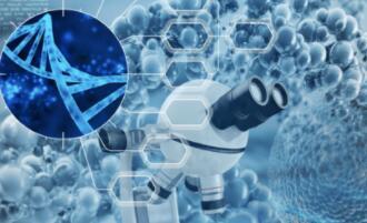 新基因疗法获突破性进展!最高分辨率的单个DNA分子图像被拍摄