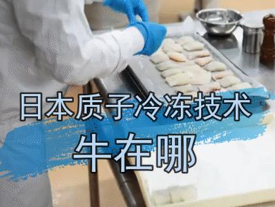 第一次听说质子冻结技术 日本人在创意细节方面真的做到极致