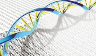 遗传多样性最新研究:科学家完成25个人种的64个完整人类基因组的测序