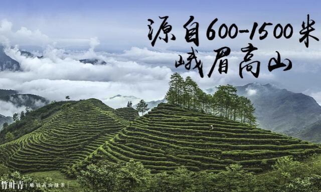 7萬茶葉企業中,終于跑出了個世界品牌