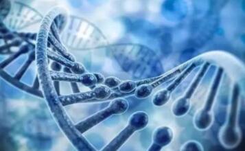 """生物安全法将于4月15日实施,37次提及""""人类遗传资源"""""""