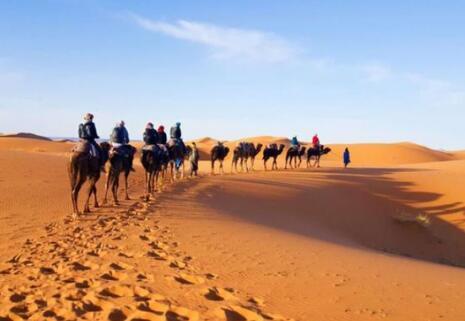 全球面临沙子枯竭危机,地球有30%的沙漠,为何沙子还会资源告急?