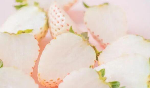 白草莓一颗 60 元,你入过网红水果的坑?