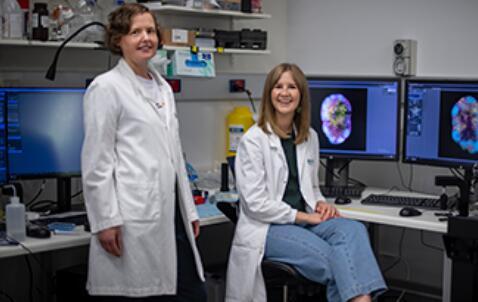 通过三维技术对淋巴细胞进行成像,可用于疫苗开发