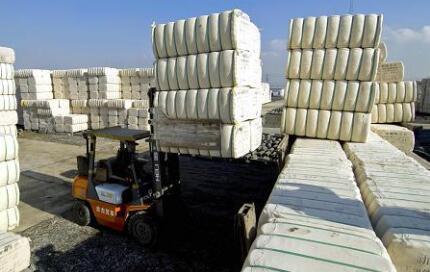 """2021新疆棉花质量补贴四大变化,""""精准补贴""""将成趋势"""