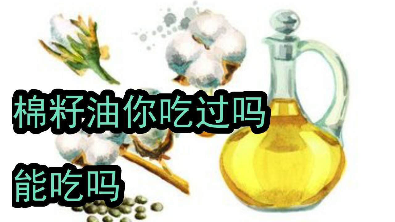 传统的棉籽油为什么现在见不到呢,是不健康吗