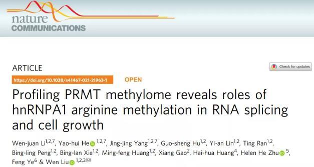 厦门大学揭示精氨酸甲基转移酶调控基因剪接和促癌机制 